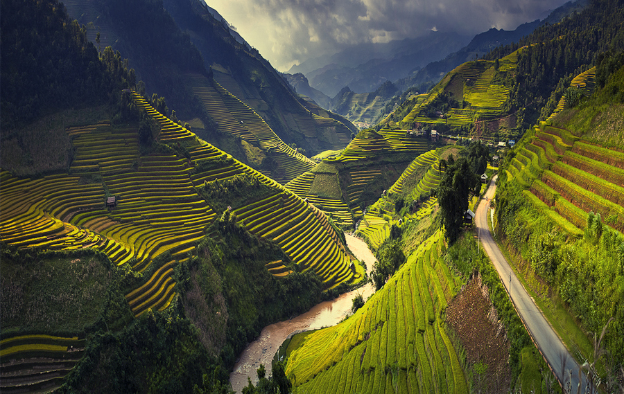 Rice terraces in Mu Cang Chai, North Vietnam